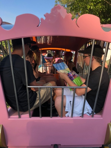 Seeing 5 big kids in 1 small cage was so funny!